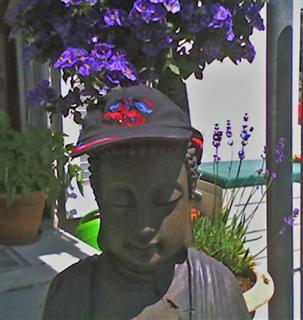 buddha  WinCE